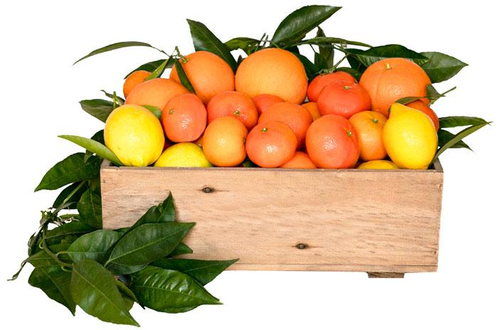 frutas-huerta-valencia